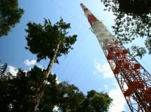 Brasil e Alemanha inauguram na Amazônia a maior torre de pesquisa ambiental da América do Sul