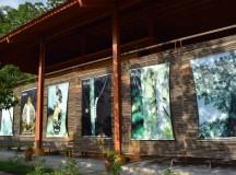 PRODAM leva internet ao Museu da Amazônia, na Reserva Ducke