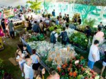 Manaus recebe feira de Flores de Holambra no próximo dia 20 de setembro