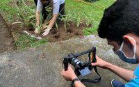 Primeira videoaula do projeto 'Minicursos On-line', da Prefeitura de Manaus, será sobre produção de mudas