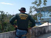 Prefeitura de Manaus registra redução do número de focos de invasão em áreas protegidas