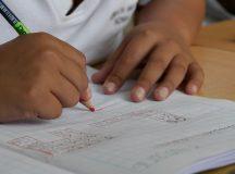 Sinepe-AM é contra o ensino domiciliar