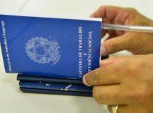 Prefeitura de Manaus ofertará mais de 130 vagas de emprego nesta sexta-feira, 14/5